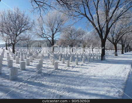 Frosty Trees at National Cementery stock photo, Frosty trees at the National Cementery after the fog lifted by Jan Nickelson