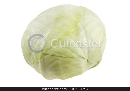 Cabbage stock photo, One fresh cabbage isolated on white background by Tiramisu Studio
