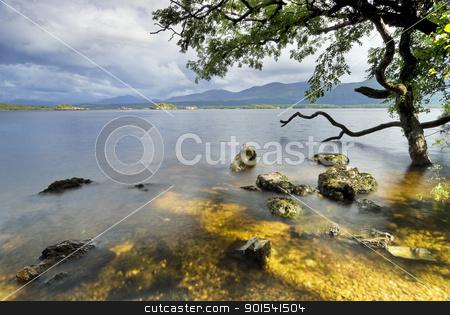 Lake view stock photo, Lough Leane Lake view from Ross Island. Killarney National Park, County Kerry, Ireland by Tiramisu Studio