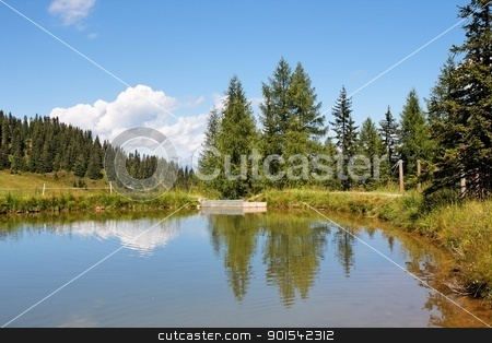 Trees and clouds reflecting in the pond stock photo, Trees and clouds reflecting in the pond by Shlomo Polonsky