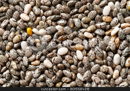 Chia seeds. stock photo, Chia seeds background, close up. by Pablo Caridad