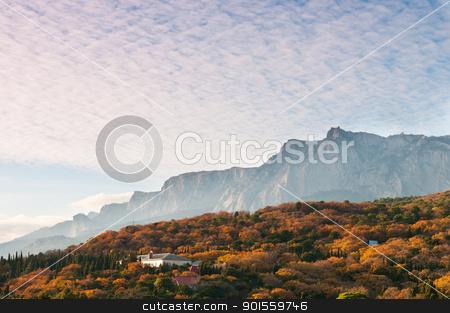 Multicoloured forest under mountains stock photo, Multicoloured autumnal forest under mountains, Crimea, Ukraine by Iryna Rasko