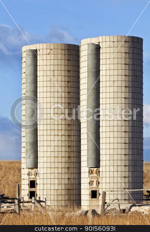 twin farm silos stock photo, two old  cylindrical silos on an abandoned farm in eastern Colorado by Marek Uliasz