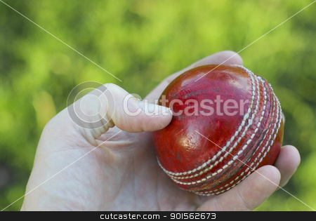 Hand Holding Cricket Ball stock photo, Bowler's hand holding a red leather cricket ball with green grass background by Stephen Gibson