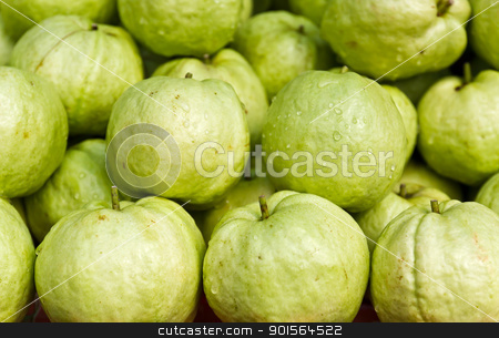 Fresh guava fruit stock photo, Fresh guava fruit in the market by stoonn