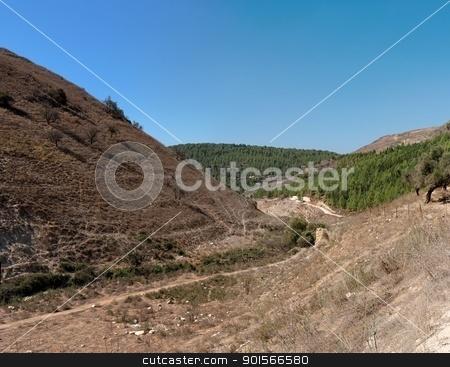 Hiking track between Mediterranean hills  stock photo, Hiking track between Mediterranean hills  by Shlomo Polonsky