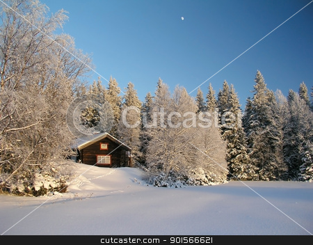 Winter landscape stock photo, beautiful landscape of snowy tree and house by Ingvar Bjork