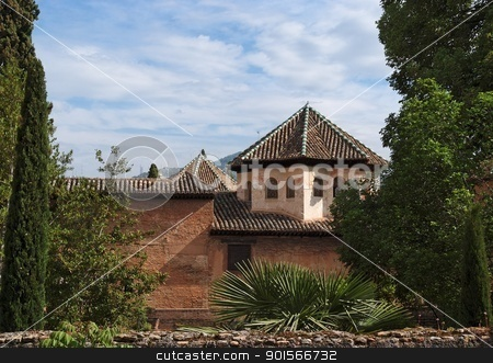 Roofs of Alhambra palace seen from Alhambra gardens stock photo, Roofs of Alhambra palace seen from Alhambra gardens  by Shlomo Polonsky