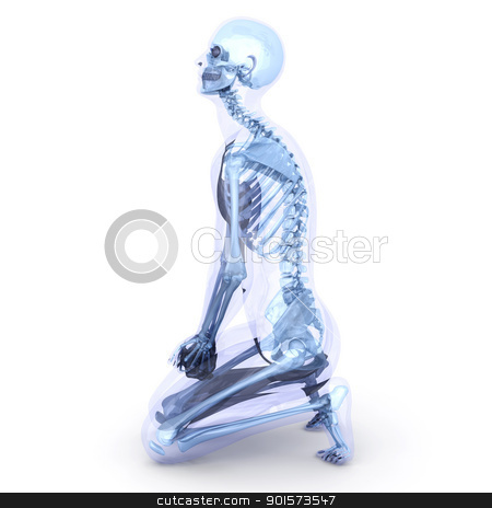 Sitting Anatomy  stock photo, A male, human, translucent Body. Anatomy visualization. 3D rendered Illustration. Isolated on white. by Michael Osterrieder
