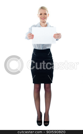 Caucasian female executive holding a blank billboard stock photo, Caucasian female executive holding a blank billboard isolated on white background by Ishay Botbol