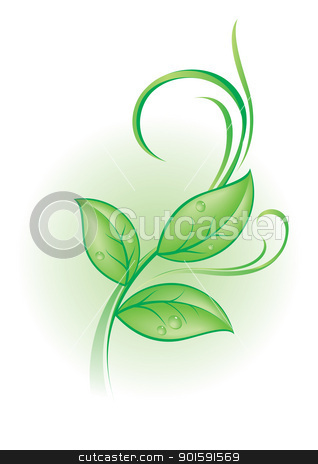 Green plant stock photo, Beautiful green plant with dew drops and vector by dvarg