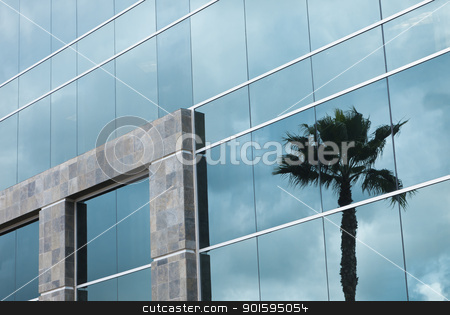Abstract Corporate Building with Palm Tree Reflection stock photo, Abstract Glass and Stone Corporate Building with Palm Tree Reflection. by Andy Dean