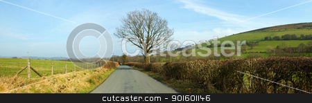 Narrow country road panorama near Garth, Wales UK. stock photo, Narrow country road panorama near Garth, Wales UK. by Stephen Rees