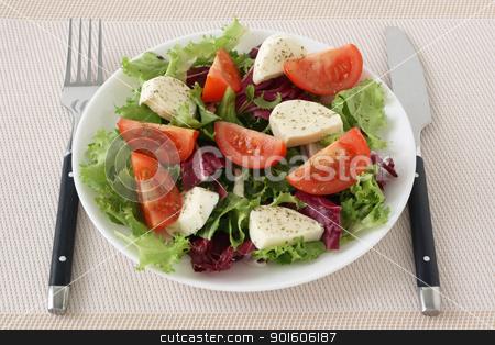 salad with cheese mozzarella stock photo, salad with cheese mozzarella by nataliamylova