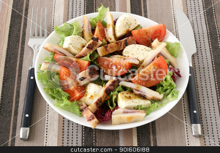 salad with cheese mozzarella and octopus stock photo, salad with cheese mozzarella and octopus by nataliamylova