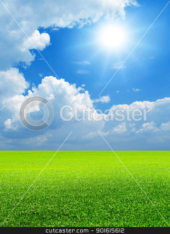 Field. stock photo, Blue sky, bright sun and green field. by Oleksiy Fedorov