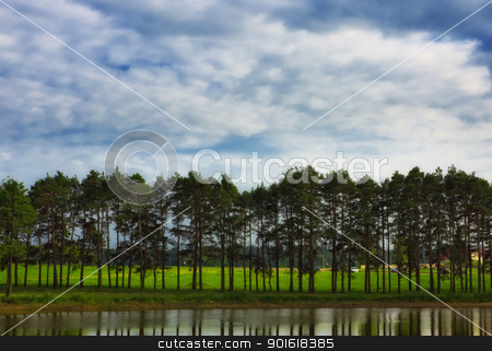forest under blue sky stock photo, forest under blue cloudy sky by Petr Malyshev