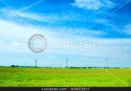 Sunny Meadow stock photo, field of grass and perfect sky, Belarus by Petr Malyshev