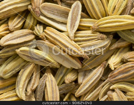 fennel seeds stock photo, close up of fennel seeds food background by zkruger