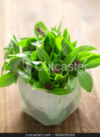 basil leaves stock photo, close up of fresh basil leaves on kitchen table by zkruger
