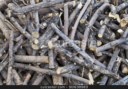 pile of sticks stock photo, a pile of cut sticks and dried branches - backyard background by Marek Uliasz