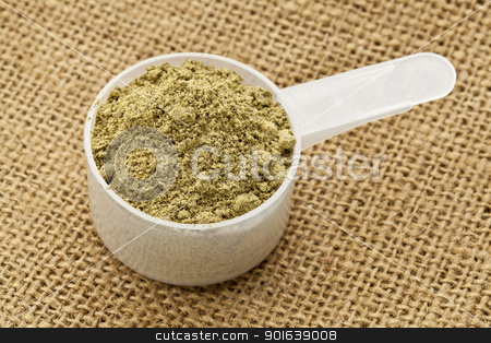 scoop of hemp protein powder stock photo, Scoop of raw organic hemp protein powder - super food rich in nutrients (proteins, antioxidants, amino and fatty acids) by Marek Uliasz