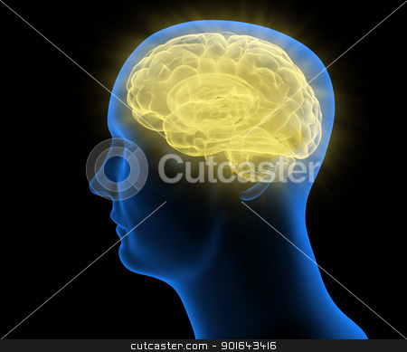 Stylized Medical illustration of a human head  stock photo, Stylized Medical illustration of a human head  by Mopic