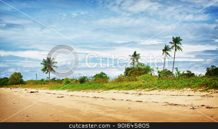 Sunny Beach stock photo, sand beach with palms, Andaman Sea, Thailand by Petr Malyshev