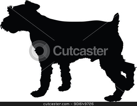 Schnauzer Silhouette stock vector clipart, A silhouette image of a standing male Schnauzer dog. by Maria Bell