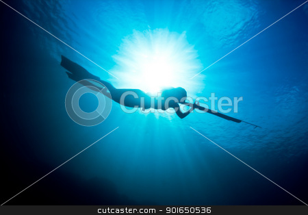 Spearfishing silhouette stock photo, A beautiful days spearfishing on the reef. by mojojojo
