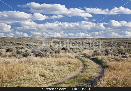 sagebrush high desert in Wyoming stock photo, dirt road in sagebrush high desert north of Saratoga, Wyoming, early spring by Marek Uliasz