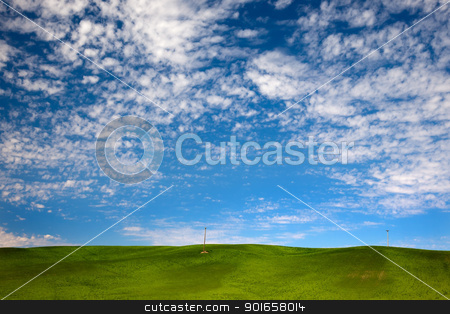 Green Wheat Grass Blue Skies Palouse Washington State stock photo, Green Wheat Grass Fields Blue Skies Palouse Washington State Pacific Northwest by William Perry