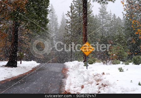 School Bus Stop Sign And Storm stock photo, A single lane road with a sign notifying that there is a school bus stop ahead in the winter time with heavy snow starting to fall by Lynn Bendickson