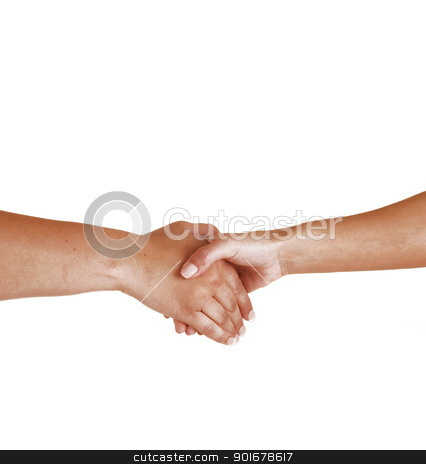 Handshake. stock photo, Two woman shaking there hands to seal the friendship.  by Horst Petzold