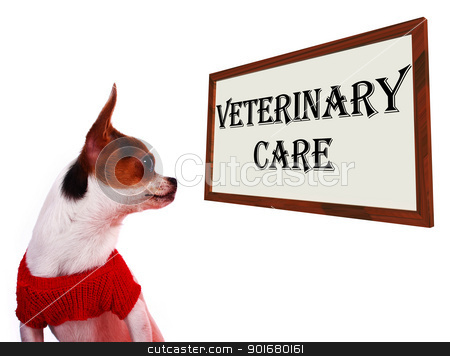Veterinary Care Sign Showing Pet Clinic Or Hospital stock photo, Veterinary Care Sign Shows Pet Clinic Or Hospital by stuartmiles
