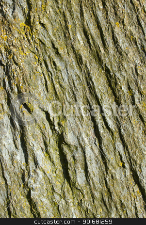 Natural rock texture surface lichen and moss close up. stock photo, Natural rock texture surface lichen and moss close up. by Stephen Rees