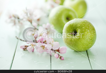 green apples stock photo, fresh green apples with water drops, shallow dof by Liv Friis-Larsen