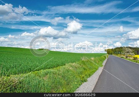 Beautiful summer rural landscape with road stock photo, Beautiful summer rural landscape with green field and blue sky by Artush