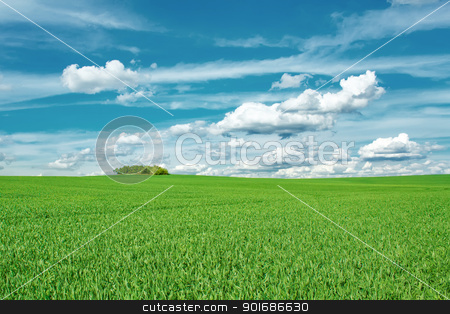 Beautiful summer rural landscape stock photo, Beautiful summer rural landscape with green field and blue sky by Artush