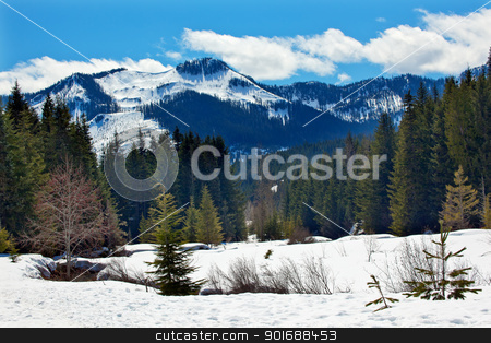 Gold Creek Mount Hyak Spring Snow Snoqualme Pass Washington stock photo, Gold Creek Mount Hyak Snoqualme Pass Spring Snow Wenatchee National Forest Wilderness Washington by William Perry