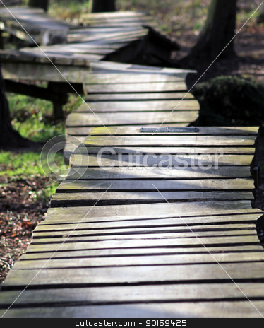 Uneven wooden path in forest stock photo, Uneven wooden pathway receding through forest. by Martin Crowdy