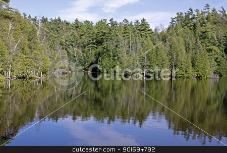Rockwood Recreation stock photo, The treeline at Rockwood Conservation Area (near Guelph, Ontario, Canada) reflecting off the creek.  by Chris Hill