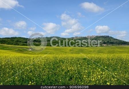Crete Senesi stock photo, The landscape odf the