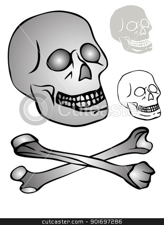various skulls stock vector clipart, Illustration of the various mazzards - vector by Siloto