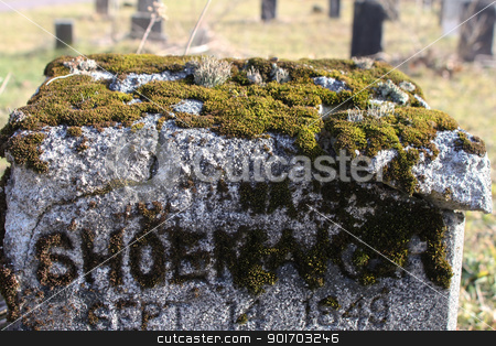 Moss tombstone stock photo, Moss growing in the letters of a tombstone by Angela Schmidt