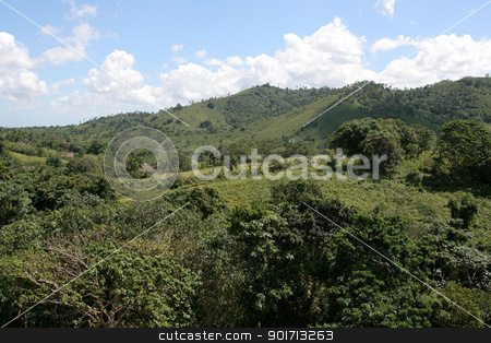 Lush Rolling Hill Landscape stock photo, The lush rolling hills landscape of the countryside near Punta Cana, Dominican Republic. by Chris Hill