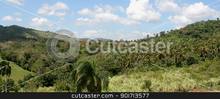 Dominican Countryside Panorama stock photo, The lush rolling hills landscape of the countryside near Punta Cana, Dominican Republic.  by Chris Hill
