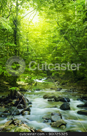 Moutain stream stock photo, Tropical moutain stream with sunbeam in a morning. by szefei