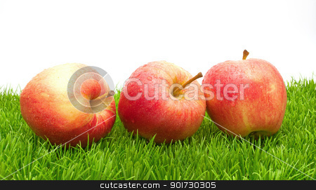 Red Apples on Grass			 stock photo, Red Apples on Green Grass - With Copyspace by JAMDesign