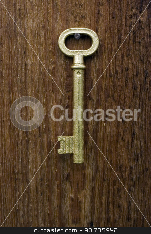Old key. stock photo, Old key of gold colour on a background of an old tree. by Yury Ponomarev
